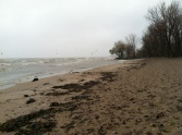 03_lake erie shore (fall)